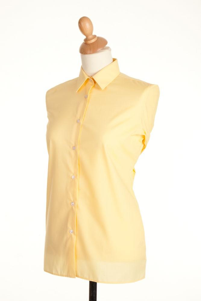 Ladies Plain Show Shirt