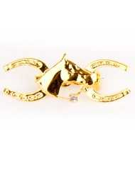 Gold plated horses head with horse shoe pin