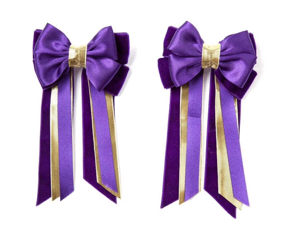 Twin Set Hair Bows Purple/gold